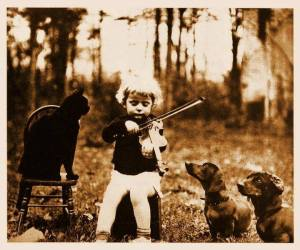 boy on violin w:dogs and cat